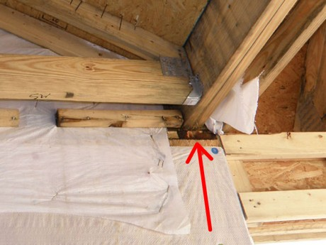 Leaky Roof Causing Damage to Rough Framing